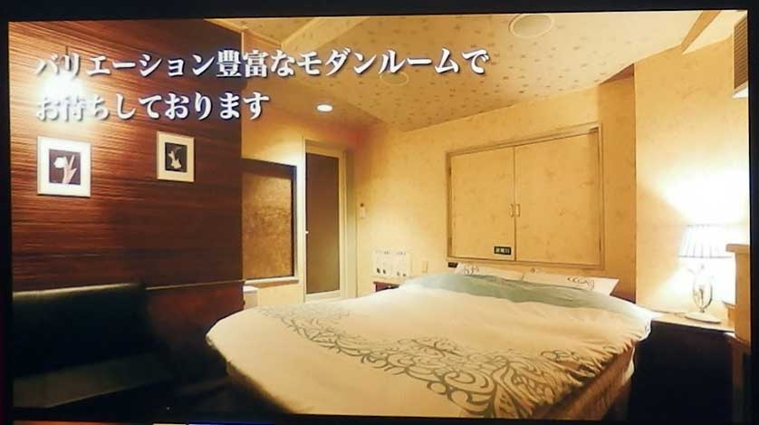 We offer a great variety of modern rooms.